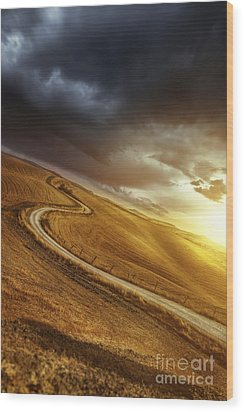 A Country Road In Field At Sunset Wood Print by Evgeny Kuklev