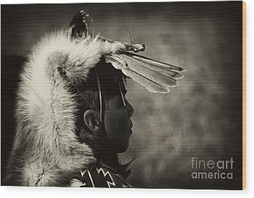4 - Feathers Wood Print by Paul W Faust -  Impressions of Light