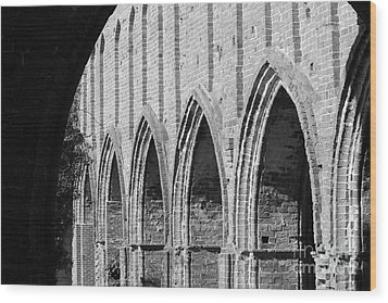 Monastery Ruins Wood Print by Four Hands Art