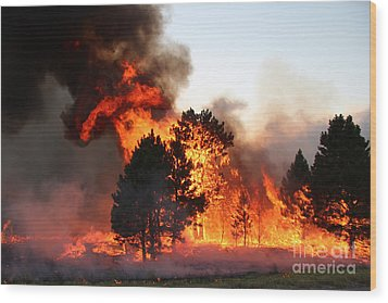 Wood Print featuring the photograph A Burst Of Flames From The White Draw Fire by Bill Gabbert