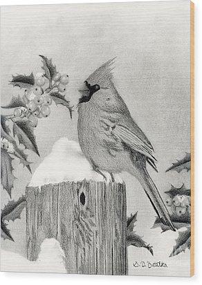 Cardinal And Holly Wood Print by Sarah Batalka