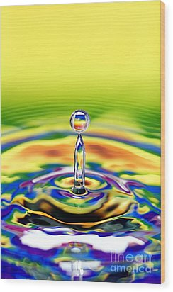 A Drop Of Colour Wood Print by Tim Gainey