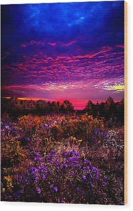 A Moment Wood Print by Phil Koch