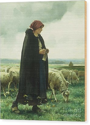 A Shepherdess With Her Flock Wood Print by Julien Dupre