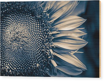 A Sunflower Dream Wood Print by Isabel Laurent