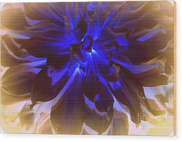 A Touch Of Blue Wood Print by Dora Sofia Caputo Photographic Art and Design