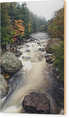 A Touch Of Fall Wood Print by Mark Papke