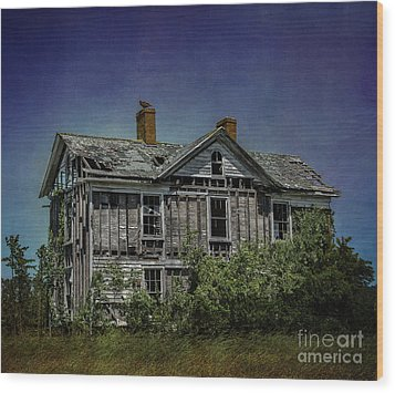 Abandoned Dream Wood Print by Terry Rowe