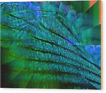 Absolute Blue Wood Print by Michael Durst