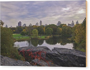 Across The Pond 2 - Central Park - Nyc Wood Print by Madeline Ellis