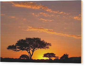 African Sunset Wood Print by Sebastian Musial