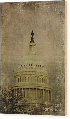 Aged Capitol Dome Wood Print by Terry Rowe