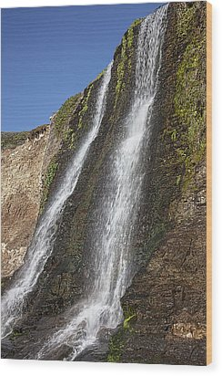 Alamere Falls Pacific Coast Wood Print by Garry Gay