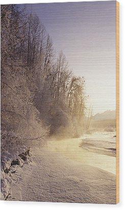 Alaska, Haines Bald Eagle Preserve Wood Print by John Hyde