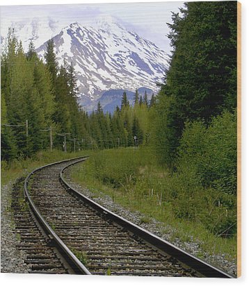 Alaskan Tracks Wood Print by Art Block Collections