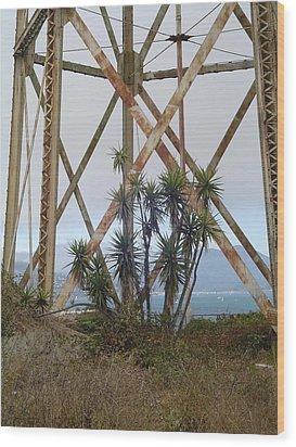 Alcatraz Contrasts Wood Print by Vadim Levin