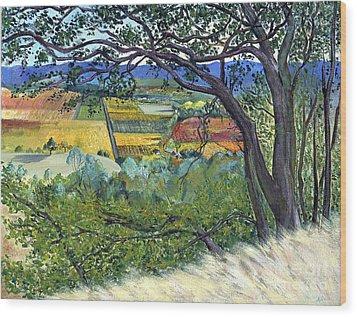 Alexander Valley Vinyards Wood Print by Asha Carolyn Young