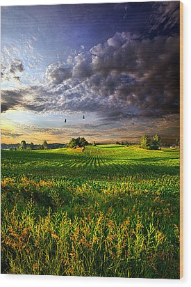 All I Need Wood Print by Phil Koch