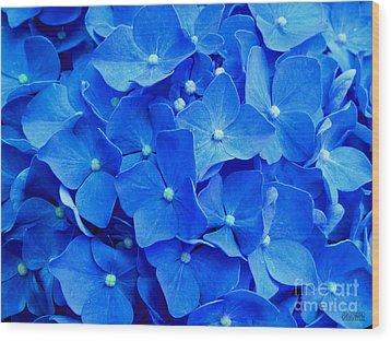 All Summer Beauty - Hydrangea Macrophylla Wood Print by Hanza Turgul