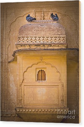 Amber Fort Birdhouse Wood Print by Inge Johnsson