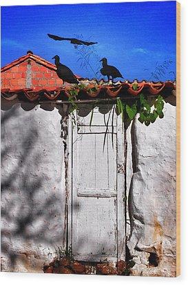 Amigos Negros Wood Print by Skip Hunt