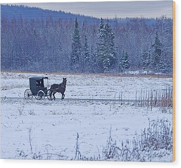 Amish Carriage Wood Print by Jack Zievis