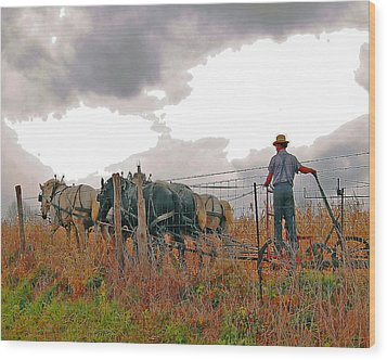Amishman Driving Plow Wood Print by Brian Graybill