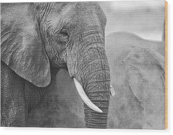 An Elephant Never Forgets Wood Print by Paul W Sharpe Aka Wizard of Wonders