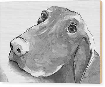 animals - dogs - Feed Me Please Wood Print by Ann Powell