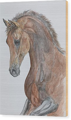 Another  Arabian Horse Wood Print by Janina  Suuronen