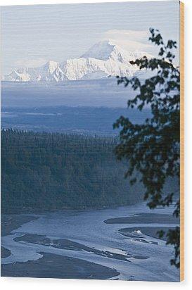 Another Denali View  Wood Print by Tara Lynn