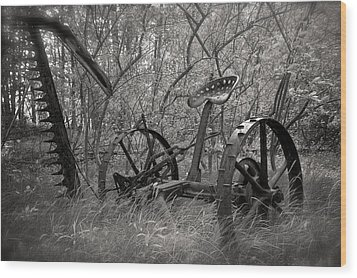 Antique Field Mower Wood Print by Mary Lee Dereske