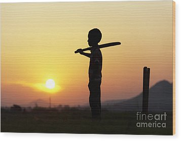 Any One For Cricket Wood Print by Tim Gainey