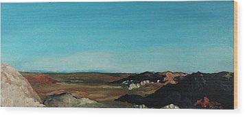 Anza - Borrego Desert Wood Print by Joseph Demaree