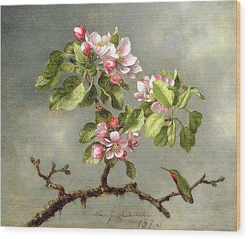 Apple Blossoms And A Hummingbird Wood Print by Martin Johnson Heade