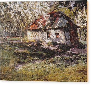 Apple Trees Blossoming Wood Print by Jake Hartz