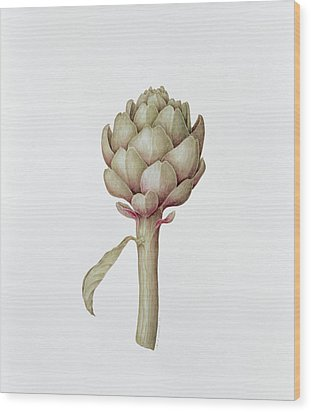 Artichoke Wood Print by Diana Everett