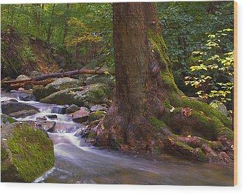 As The River Runs Wood Print by Karol Livote