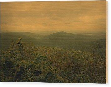 Assurance Of Peace Wood Print by Nina Fosdick