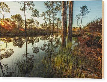 At The Sunrise Wood Print by Volker blu Firnkes