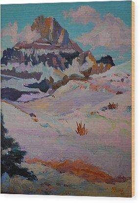 At The Top - Glacier National Park Wood Print by Francine Frank