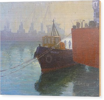 Auckland Morning Wood Print by Terry Perham