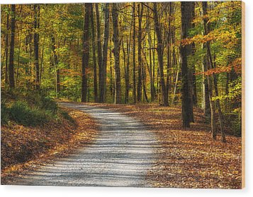 Autumn Beauty Wood Print by Dale Kincaid