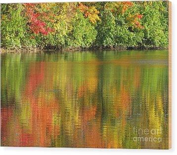 Autumn Brilliance Wood Print by Ann Horn