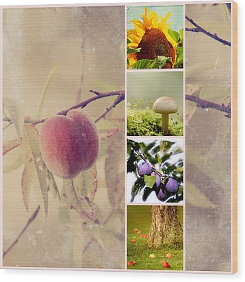 Autumn Collage Wood Print by Heike Hultsch