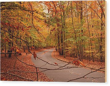 Autumn In Holmdel Park Wood Print by Angie Tirado