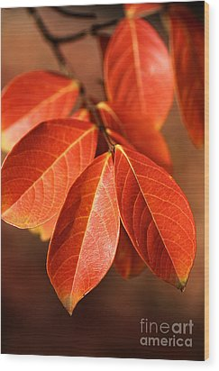 Autumn Leaves Wood Print by Joy Watson