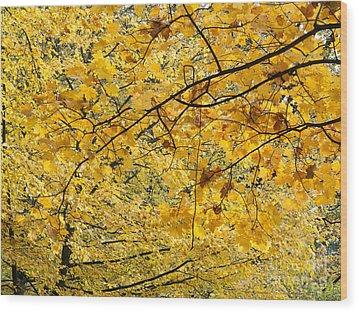 Autumn Leaves Wood Print by Michal Boubin