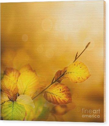 Autumn Leaves Wood Print by Mythja  Photography