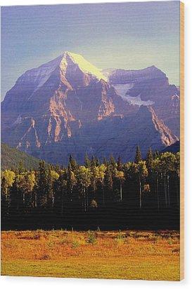 Autumn On The Mount Wood Print by Karen Wiles